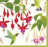 Hummingbirds Paper Luncheon Napkins - 20 Pk.