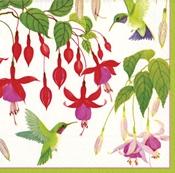 Hummingbirds Paper Luncheon Napkins - 20 Pk.