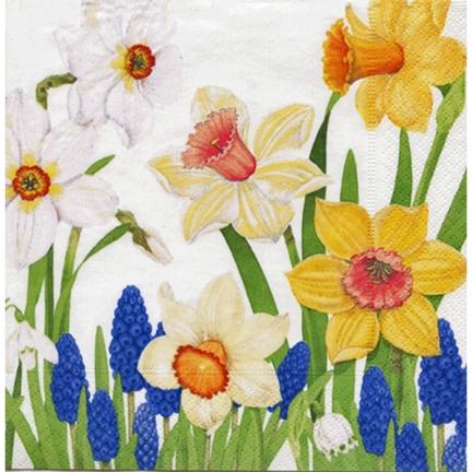 Jonquils & Daffodils Paper CocktaiNapkins - 20 Pk.