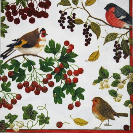 Winter Birds (Domherre) Luncheon Napkins by Caspari - Package of 20 paper napkins by artist Karen Fjord Kjaersgaard. Perfect for this years Christmas party!