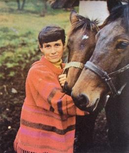 Karen Kjærsgaard heste
